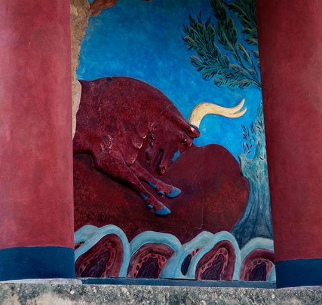 Toro in un paesaggio con ulivi / photo Impressioni Jazz
